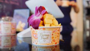 Viceland Frozen Fruit Co