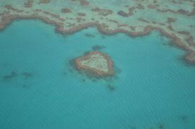 18.heart reef
