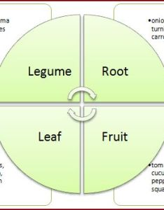 Crop rotation also garden  simple system rh betterhensandgardens