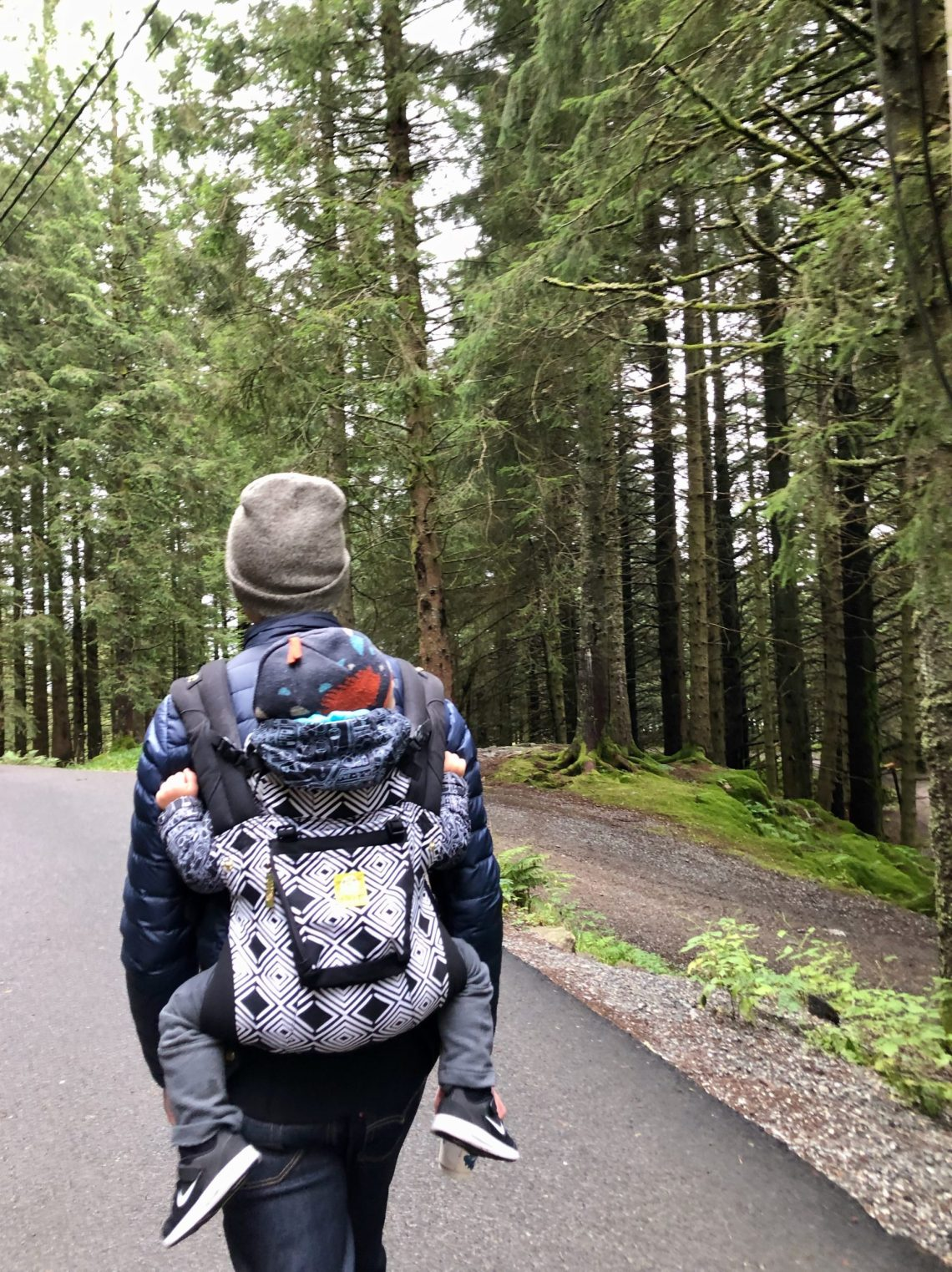Toddler hiking in Bergen, Norway with Lillebaby carrier.