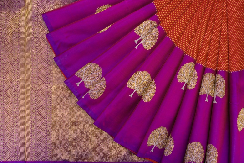 parisera saree