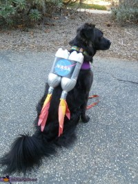 Ten Dangerously Adorable DIY Dog Costumes