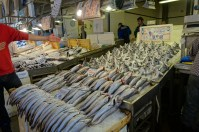 display of fish in the Athens fish market