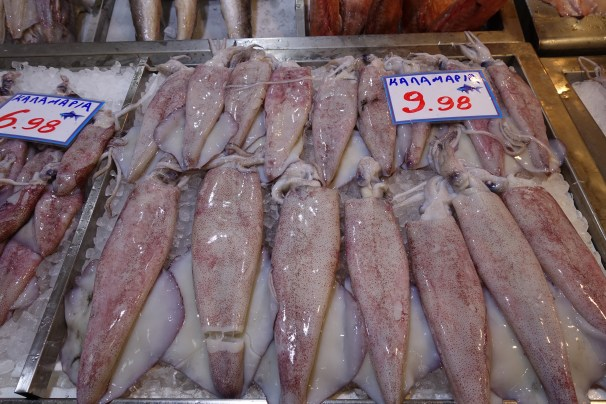 Tray of fresh squid in the Athens fish market