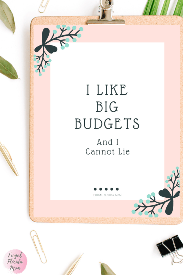 I Like Big Budgets And I Cannot Lie printable budget tracker worksheets - 20-Page Plan Like A Mother! Printable Bundle