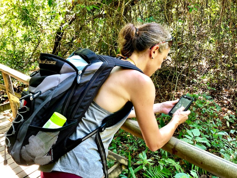 Travel Connected with Go-Sim - the flexible and affordable sim cards   sim card for world travelers   Sim card for digital nomads tips   international sim card   travel sim card   world travel   connected travel   blogger resources   go sim   #gosim #digitalnomad #connectedtravel #traveltips #traveltools #internationalsimcard #travelsimcard