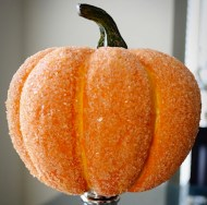 "Salt your pumpkin: Kosher salt and white glue ""crystallizes"" a pumpkin. I bet it even works well to keep the mold away. Image courtesy of Bobvila.com."
