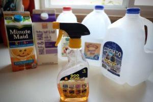 Milk Carton Birdhouse For Kids | Frugal Fun Mom