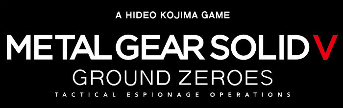 MGS Banner Large