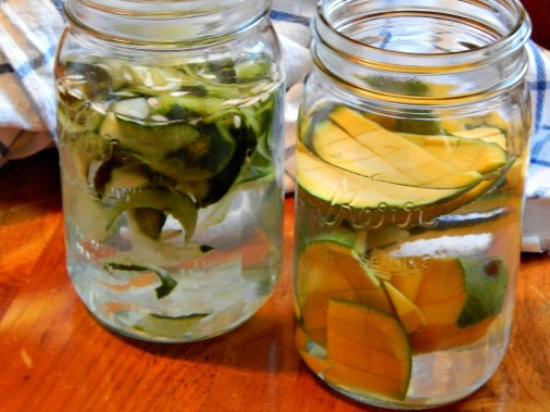Fruit & Veg waste goes in Spa Water on a Budget