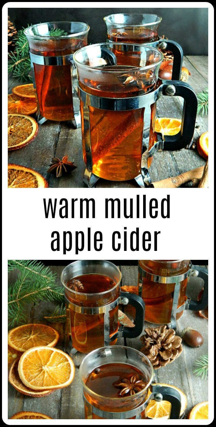 Warm Mulled Cider is so super easy; no need to buy the packets. Just simmer cider with spices and warm yourself from the inside out. Great for the slow cooker. #MulledCider #AppleCider #SpicedAppleCider #HotAppleCider #WarmMulledCider