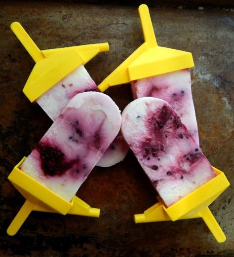 Blackberry Yogurt Swirl Popsicles