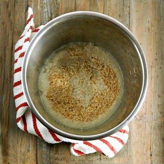 Best Instant Pot Steel Cut Oatmeal 2 1/2 cups water