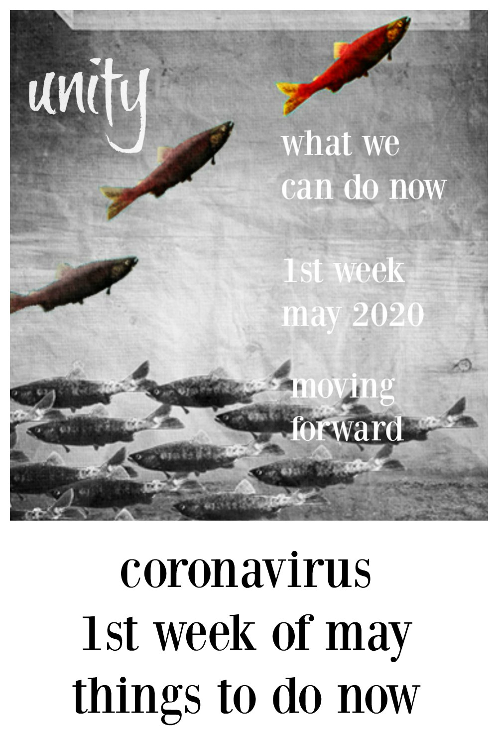 We're coming up to the end of the first week at home for Coronavirus. Just checking in & talking about what we can do now! #GroceriesCoronavirus #SafeGroceries #AreGroceriesSafe