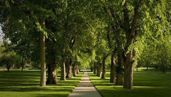 Fort Collins, Colorado State University Oval