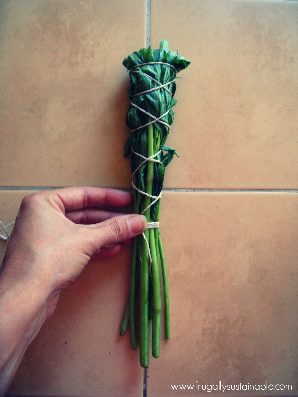 How to Make Smudge Sticks  and a List of Plants Commonly