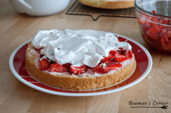 Friday Home Garden DIY - Strawberry Tiramisu