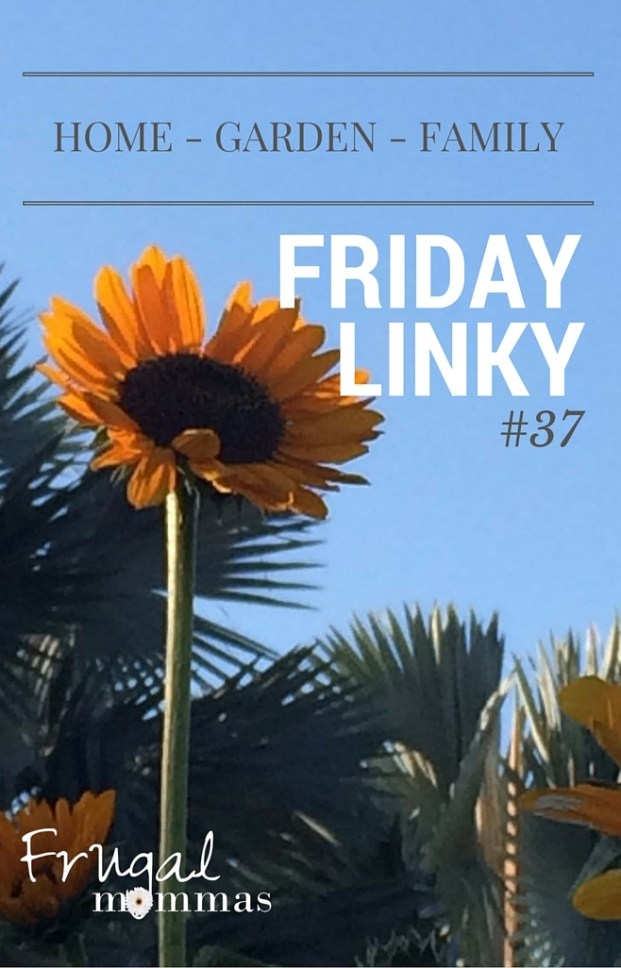 Frugal Friday Linky 37