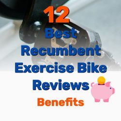 12 Best Recumbent Exercise Bike Reviews (and Benefits)