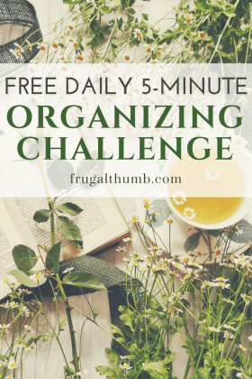 Free Daily 5-minute Organizing Challenge