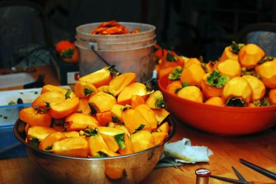 persimmons-cut