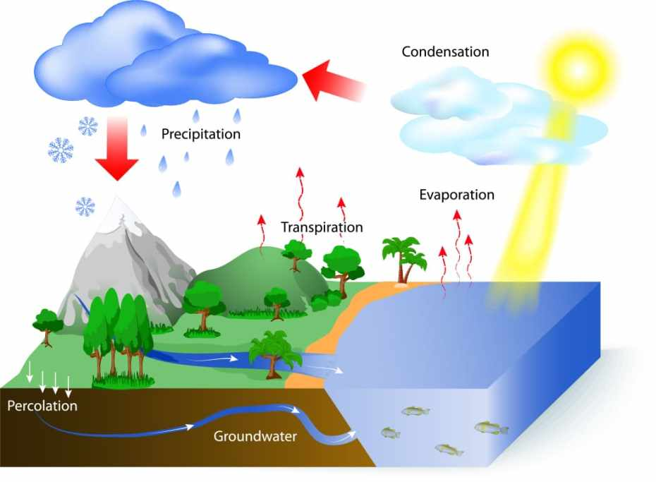 evapotranspiration