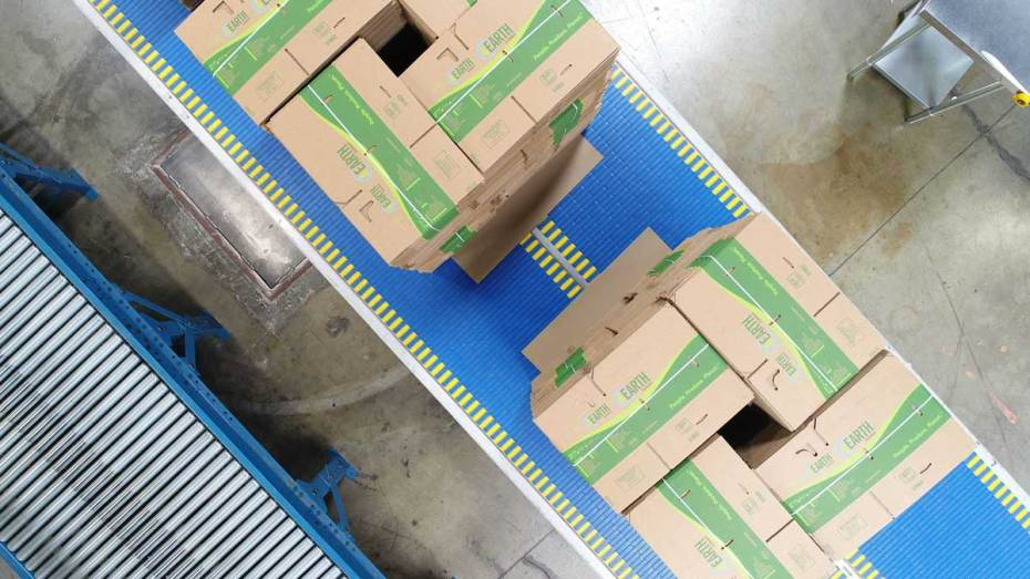 Fruit Growers Carton Plant