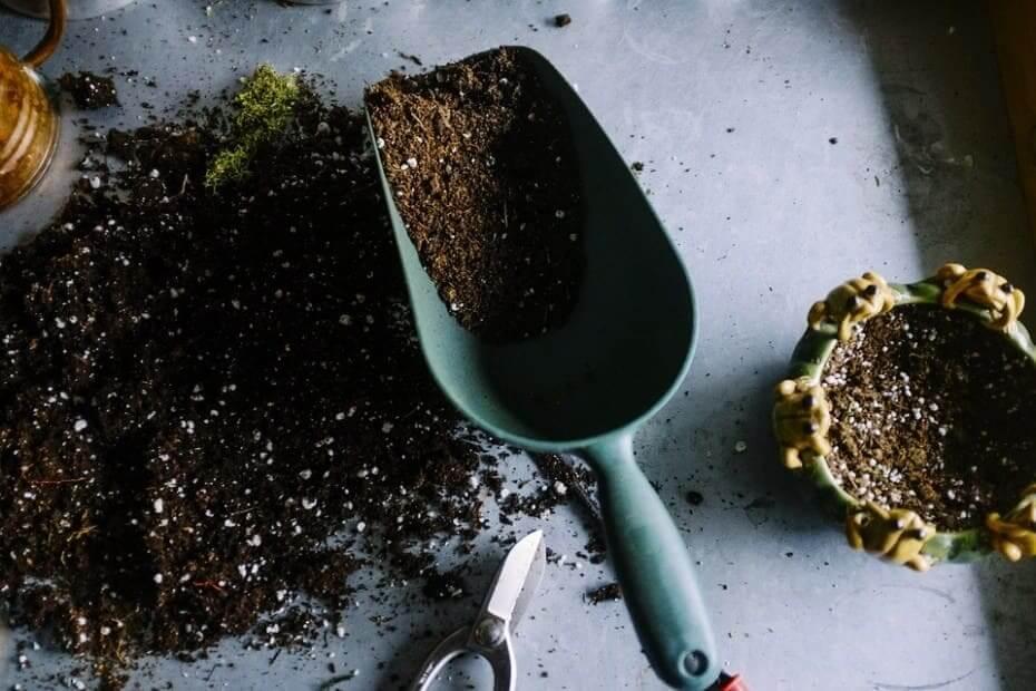 fertilizer scoop