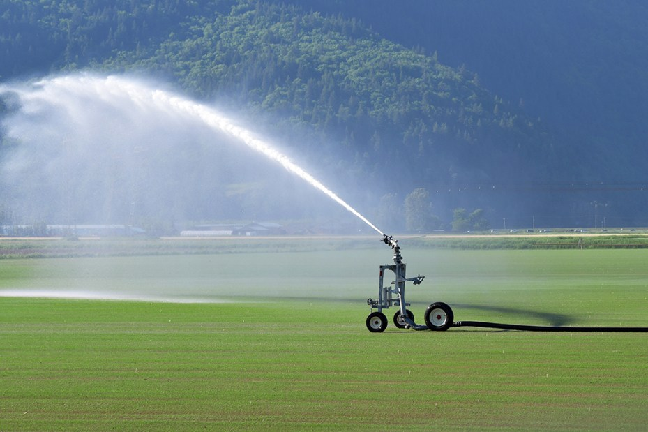 Traveling Gun Irrigation System in a Field Watering Crops