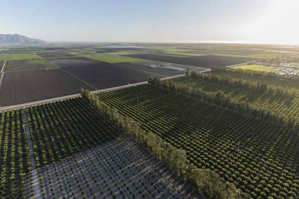 farm-fields-ventura-county-california