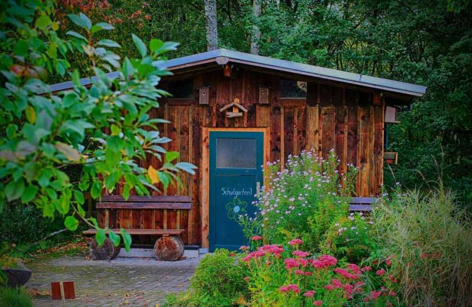Community garden ideas shed in a forest.