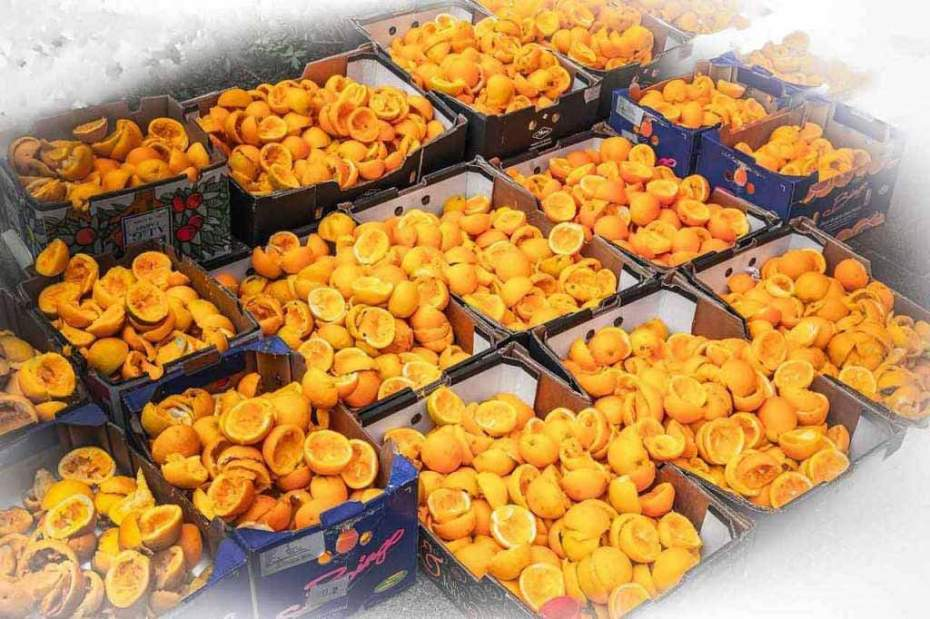 Boxes of halved orange peels require food waste solutions.