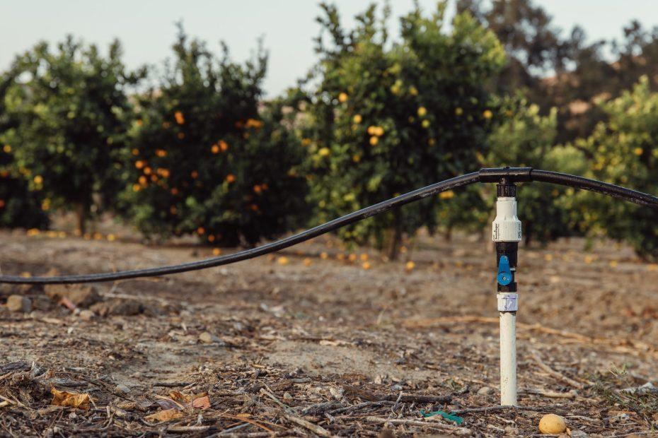 FGS irrigation services