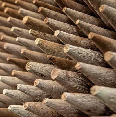 Logs in Retail
