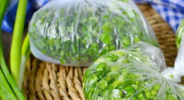 Хранение зеленого лука