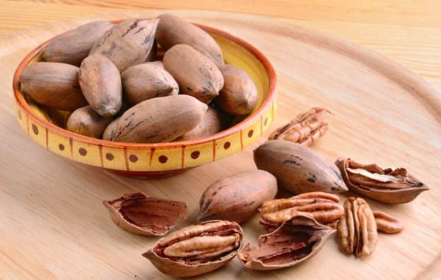 Родиной ореха пекан считается Северная Америка