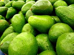 Avocado fruit facts