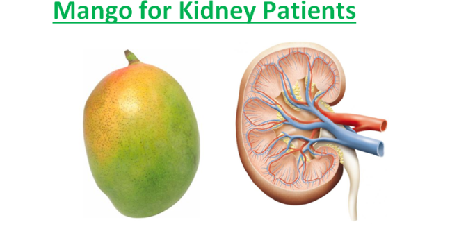 Mango for Kidney Patients