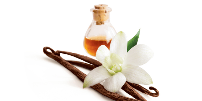 Vanilla Flavoring and Extract