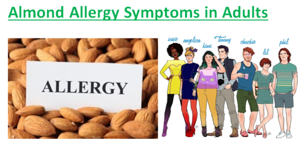 Almond Allergy Symptoms in Adults