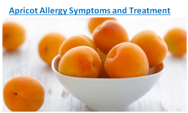 Apricot Allergy Symptoms and Treatment