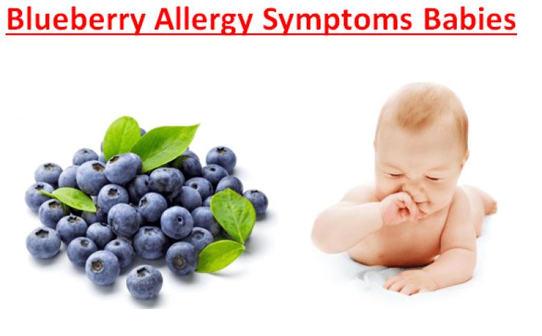 Blueberry Allergy Symptoms Babies