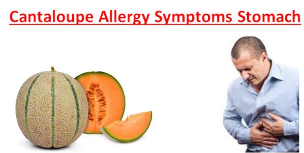 Cantaloupe Allergy Symptoms Stomach