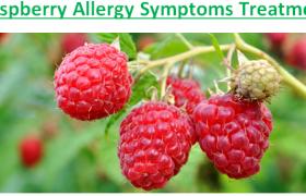 Raspberry Allergy Symptoms Treatment