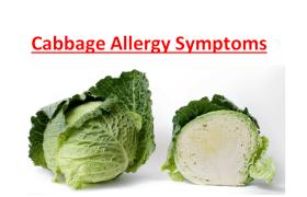 Cabbage Allergy Symptoms