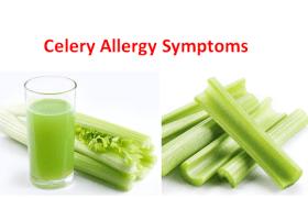 Celery Allergy Symptoms, Are you allergic to celery