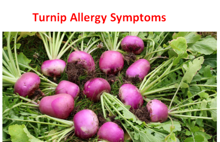 Turnip Allergy Symptoms