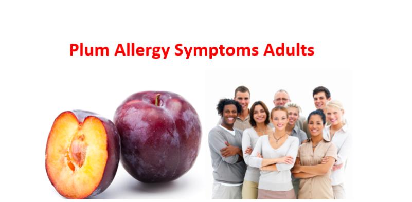 Plum Allergy Symptoms Adults