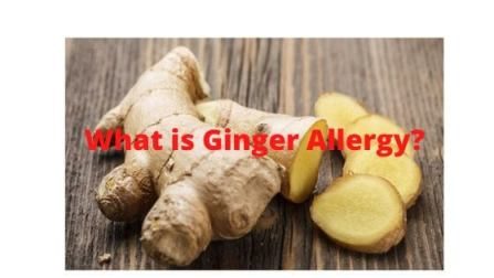 What is Ginger Allergy