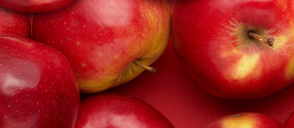 Merre tovább szabolcsi alma?